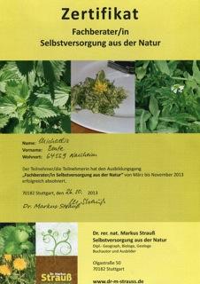 Pflanzenkurs: Heilpflanzen und essbare Wildpflanzen im Herbst @ Lindenhof | Ober-Ramstadt | Hessen | Deutschland